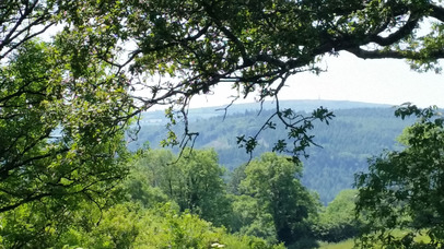 Views from Sherrill Farm Holiday Cottages Devon